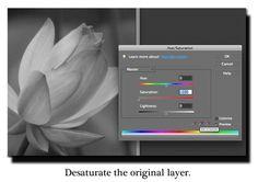 Photography Basics: Photo Editing