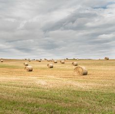 My Lightroom brushes helped bring the sky to life and really boosted the lights and shadows of the hay barrels!