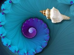 The Golden Ratio Big Island Hawaii, Fractal Art, Sacred Geometry, Sea Creatures, Belle Photo, Shades Of Blue, Swirls, Color Inspiration, Mother Nature