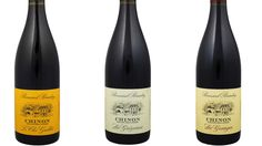 Sjeldent godt kjøp og sjelden lagringsdyktig vin