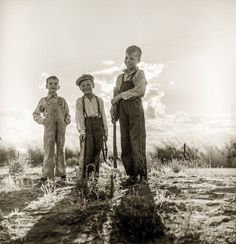 """Golden (State) Boys: 1938 """"Children of [Dust Bowl] refugee families now on Works Progress Administration. They live in tents on the flats outside of Bakersfield, California."""" Photo by Dorothea Lange Old Pictures, Old Photos, Brother Pictures, Vintage Photographs, Vintage Photos, Works Progress Administration, Migrant Worker, Dust Bowl, High Resolution Photos"""