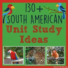 A really great all inclusinve list of South American Unit Study ideas for kids. FREE videos playlist, books, recipes, hands on learning ideas, crafts, and much much more!!