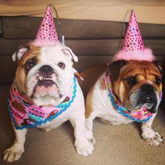 My Birthday Girls! • by Trina Henise