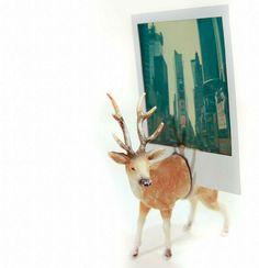 DIY Photo Holder Made Of A Deer Toy -cut toy in half, glue gun powerful magnets to each side. Valentines Bricolage, Valentines Diy, Diy Photo, Saint Valentin Diy, Deer Photos, Little Presents, Plastic Animals, Clay Animals, Diy Gifts For Boyfriend