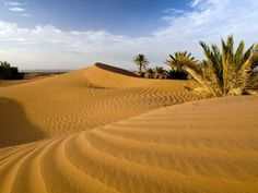 Photographic Print: Sahara Desert at M'hamid, Morocco, Africa by Ben Pipe Photography : Fontanini Nativity, Find Art, Framed Artwork, Vineyard, Deserts, Country Roads, Display Ideas, Destinations, Poster