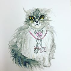Scottish Fold Kitten watercolour by Lizzie Reakes.