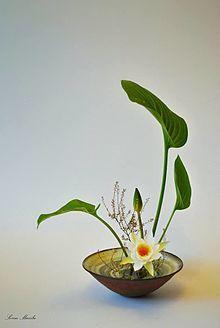 "@Wikipedia Encyclopedia® Ikebana 生け花, ""arranging flowers"" a.k.a kadō華道, ""the way of flowers"" [Photo: Waterlily. Upright: Chokutai Moribana 盛り花, 盛花 ®Sorin Mazilu ©2015]"