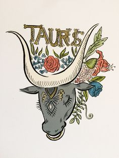 Signs of the Zodiac  Taurus Illustration 8 x by OliveandCoStudio