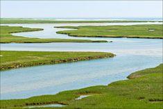 Fort Hill Salt Marsh Wellfleet Cape Cod National by FrigidLight