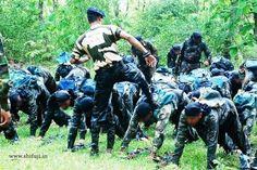 Chief Commandos Mentor Jungle Warfare