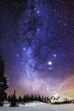 snow winter sky landscape upload trees Washington night stars mountains USA milky way science Astronomy vertical national forest mt baker All Nature, Science And Nature, Beautiful Sky, Beautiful Landscapes, Ciel Nocturne, Sky Full Of Stars, Star Sky, To Infinity And Beyond, Galaxy Wallpaper