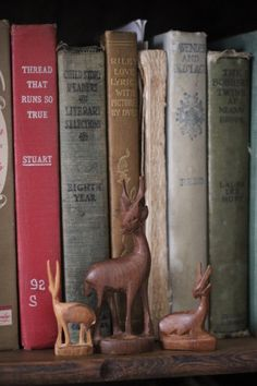 Antique Books, Vintage Books, Cranberry Wine, Anna, Oh Deer, Book Lovers Gifts, Used Books, Book Collection, Bookends