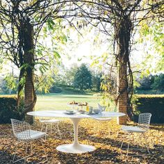 Chaise Bertoia Outdoor Avec Galette D'assise | Knoll - Silvera Eero Saarinen, Saarinen Table, Knoll Table, Interior Design Magazine, Oval Table, Round Dining Table, Circular Table, Dining Table Sizes, Dining Chairs