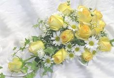 Google Image Result for http://drummersgardencenter.com/wp-content/uploads/2011/03/cascading-yellow-roses.jpg