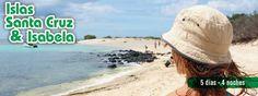 -Programas Combinados ITINERARIO DÍA 1 ISLA SANTA CRUZ  Salida desde Quito o Guayaquil hacia la Isla de Baltra, Traslado a la Isla Santa Cruz, en donde nos espera el transporte terrestre y continuamos al hotel de su elección. Almuerzo. En la tarde visita a la Estación Científica Charles Darwin y su Centro de Interpretación, con la ayuda de la UICN (Unión Internacional para la Conservación de la Naturaleza), UNESCO (Organización de las Naciones Unidas para la Educación, la Ciencia y la…