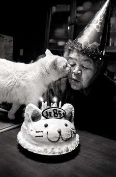 Misao the Big Mama and Fukumaru the Cat 10