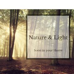 We use Austrian wood to create a unique lamp you can control remotely. Check out our newest Video here on instagram or Facebook! #livingnature #woodworking Unique Lamps, Woodworking, Facebook, Create, Instagram Posts, Check, Nature, Projects, Log Projects
