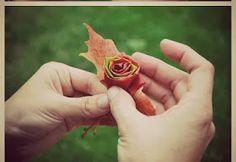 Πως να φτιαξω τριανταφυλλα απο φυλλα φθινοπωρου