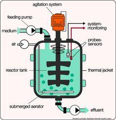 Bioreactor. Illustrations Kenneth buddha Jeans