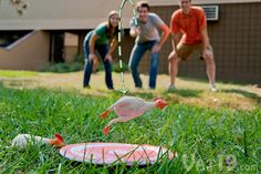 Flickin Chicken Pollo Tossing Game - Watch them chickens bounce!