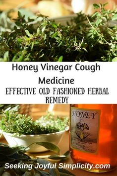 Are you prepared for your next cold? Do you want to make your own herbal medicine but feel overwhelmed at finding the ingredients or preparing the medicine yourself? Don't wait until the next time you aren't feeling well to try an herbal remedy! There are simple yet powerful medicines you can make easily at home with common kitchen ingredients. And I can tell you from experience, they work remarkably well. Start with this simple but incredibly effective honey vinegar cough medicine.