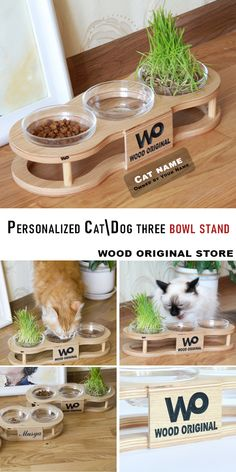 food stand name ideas \ stand name ideas + lemonade stand name ideas + coffee stand name ideas + snow cone stand name ideas + farm stand name ideas + concession stand name ideas + table name stand ideas + food stand name ideas Dog Feeder, Diy Bird Feeder, Pet Furniture, Cat Tree House, Diy Cat Toys, Puppy House, Dog Bowls, Animal Room, Cat Enclosure