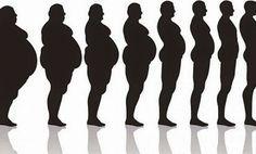 Algumas pessoas não entendem a importância de receitas naturais para ajudar a emagrecer.  Elas dizem que, para perder peso, basta fazer dieta e exercícios.  Não é verdade.