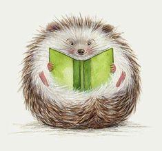 Hedgehog || Books