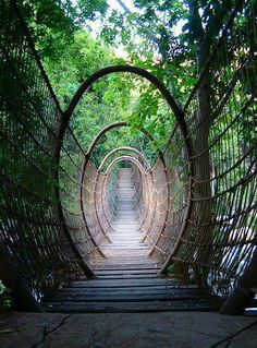 The Spider Bridge in Sun City Resort, South Africa - 101 Most Magnificent Places Made by Nature or Touched by a Man Hand (part 2)