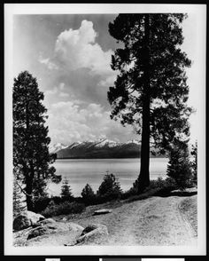 View of Lake Tahoe from a nearby path, ca.1910. http://digitallibrary.usc.edu/cdm/ref/collection/p15799coll65/id/7616
