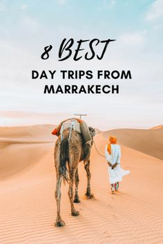 No visit to Morocco is complete with a day trip from Marrakech to explore this beautiful country. Here are our favorite easy daytrips from Marrakech to get away from the bustle and hustle of the medina. #Morocco #Marrakech #Travel #DarlingEscapes