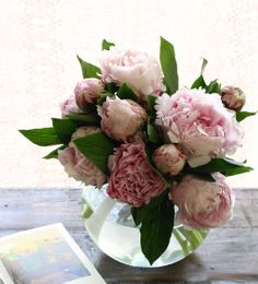 """Shakuyaku""  its one of the favorite flower, I used for wedding!"