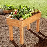 Farmer D Cedar Raised Bed Kit