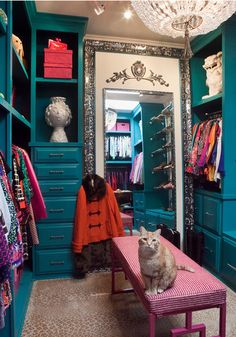 colorful turquoise lacquer custom closet