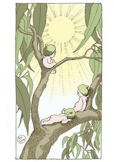 May Gibbs (Australian illustrator) Brownie Fairy, Aussie Christmas, Poppies Tattoo, Mermaid Fairy, Beautiful Fairies, Flower Fairies, Australian Artists, Botanical Prints, Mythical Creatures