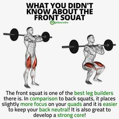 Are you squatting?Squats, back and front, are one of the best exercises you can … – Exercise Gym Workout Tips, Squat Workout, Fun Workouts, Glute Workouts, Street Workout, Barbell Squat Form, Weight Training, Weight Lifting, Weight Loss