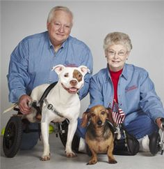 Inspiration on wheels: Rescued and disabled dogs Chilli and Arlo visit rehab patients at the Baylor Institute for Rehabilitation and give back! Aww!