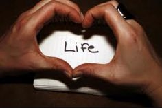Love your life. It's the only one you've got