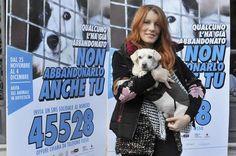 Fino al 4 dicembre è possibile inviare un sms al numero 45528 per donare 2 euro e aiutare le associazioni che combattono l'abbandono e il randagismo. Clicca sul link in bio per scoprire di più sulla campagna SMS-SalvaMi Subito presentata qualche giorno fa dall'On. Michela Brambilla. #BauSocial  #Milano #Italia #Cane #Cani #Dog #Dogs #michelabrambilla #love #noabbandono #randagismo #animali #sms #roma #bari #pescara #verona #venezia #calabria #sicilia #igersmilano #toscana #sardegna #puglia…