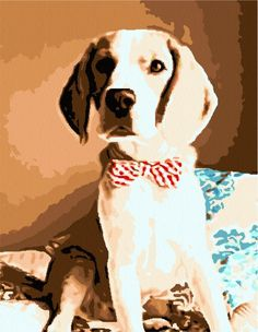 turn your dog's photo into a paint by number kit