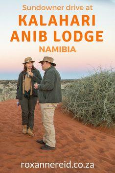 Kalahari Anib Lodge: enjoy a sundowner drive in Namibia - Roxanne Reid Slow Travel, Family Travel, Travel Tips, All About Africa, Wildlife Safari, Countries To Visit, African Safari, Africa Travel, Travel Inspiration