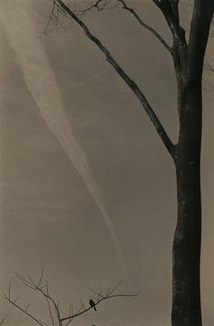 Masao Yamamoto- such unique and beautiful B & W photography.