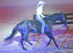 Stacy Westfall & her mare perform without bridle & saddle