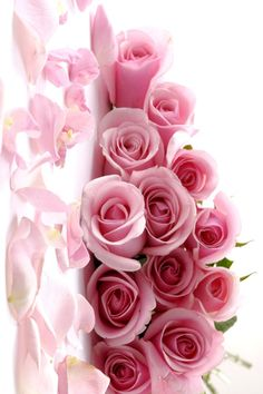 Beautiful roses for a beautiful friend! Love always. XOXO's