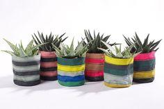 Textil növénytartók kaktuszoknak | Kövirózsa Dekor