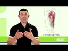 ▶ Hip Adductors - YouTube
