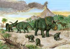 arrhinoceratops++albertosaurus+by+atrox1.deviantart.com+on+@DeviantArt