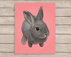 Rabbit Nursery Art Print, Bunny Nursery Art, Baby Girl Nursery Art, Baby Nursery Decor, Baby Girl Gift, Rex Rabbit, Girl Nursery Wall Art by JulieAnnStudios on Etsy