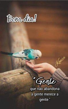 Bom dia! Carpe Diem, Happy Day, Life, Animals, Nostalgia, Motivation, Design, Cute Good Morning Messages, Good Morning Photos