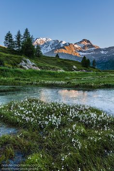 Simplon - Wallis - Switzerland